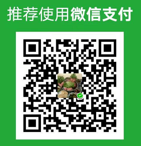 frp免费token获取方法